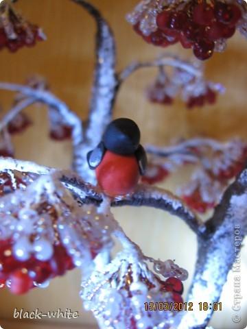 Поделка изделие Бисероплетение Рябина под снегом Бисер фото 3.