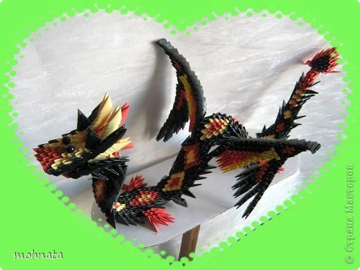 Дракончики фото 1