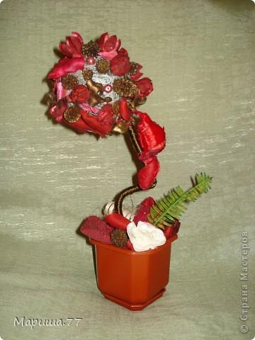 Вот такое деревце получилось из аромапакетика (состав:пузереплодник,кедровый орешек,шелуха плодов каучукового дерева,лепестки розы),купленного на распродаже в супермаркете. фото 1