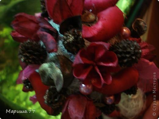 Вот такое деревце получилось из аромапакетика (состав:пузереплодник,кедровый орешек,шелуха плодов каучукового дерева,лепестки розы),купленного на распродаже в супермаркете. фото 3