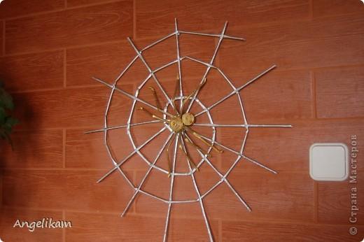 Золотой паучок фото 3