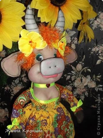 Это не просто коровушка- она благородных кровей! Принцесса! фото 2