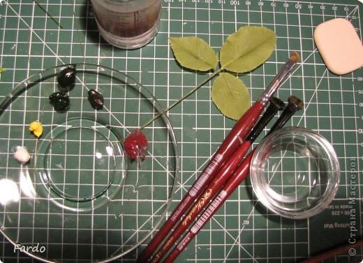 Мастер-класс Поделка изделие Флористика искусственная Лепка лист розы-вариант с вклееной проволокой Фарфор холодный фото 9