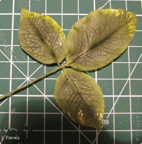 Мастер-класс Поделка изделие Флористика искусственная Лепка лист розы-вариант с вклееной проволокой Фарфор холодный фото 12