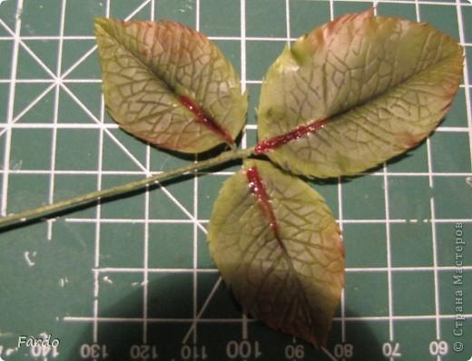 Мастер-класс Поделка изделие Флористика искусственная Лепка лист розы-вариант с вклееной проволокой Фарфор холодный фото 14
