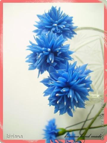 Здравствуйте жители Страны! Вот такая заколочка краб уменя получилась, с орхидеями фаленопсис и хризантемами. Честно говоря, мне самой очень нравится такое сочетание, надеюсь Вам тоже понравится! фото 3