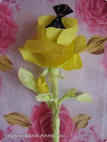 """Когда-то в интернете видела подобные конфетные цветы.И не потрудилась посмотреть в """"стране"""". И только сегодня увидела,что есть МК по чудесным букетикам. Но свои цветочки делала почти интуитивно.Так что не судите строго.Девочкам и такие цветочки понравились) На фото тюльпаны-весенние цветы,на весенний день рождения маленькой девочке на 1годик. Сказали дарить деньгами,но мне захотелось порадовать и маму и бабушку и саму маленькую девочку хотя бы букетиком цветов,который в отличие от живых могут постоять и послужить хоть какой-то памятью о первом маленьком празднике ее жизни) фото 3"""