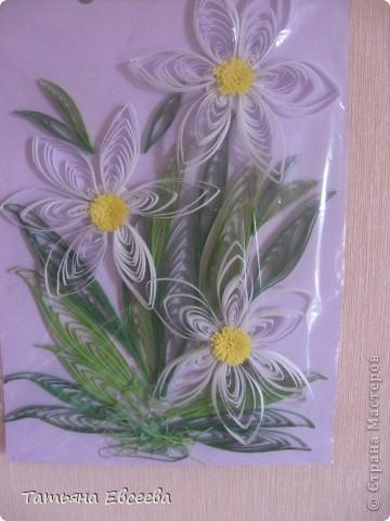 Нарциссы, которые вдохновили меня на квиллинг. Спасибо MaryBond огромное! фото 2