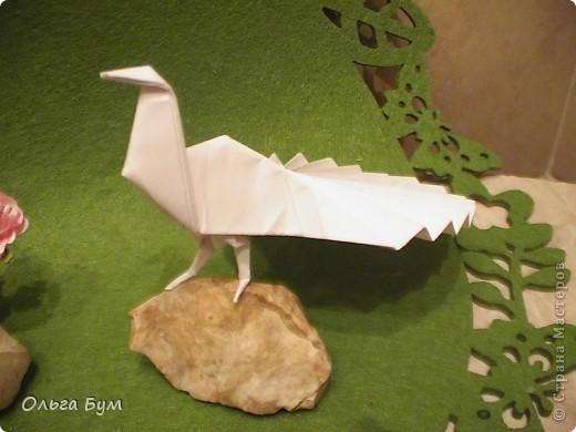 Поделка изделие Оригами Павлин