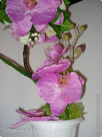 Орхидея растёт на дереве? У меня ДА! фото 2
