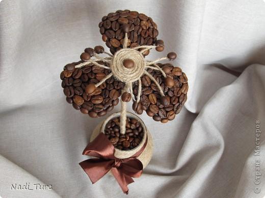 Цветы из из кофе