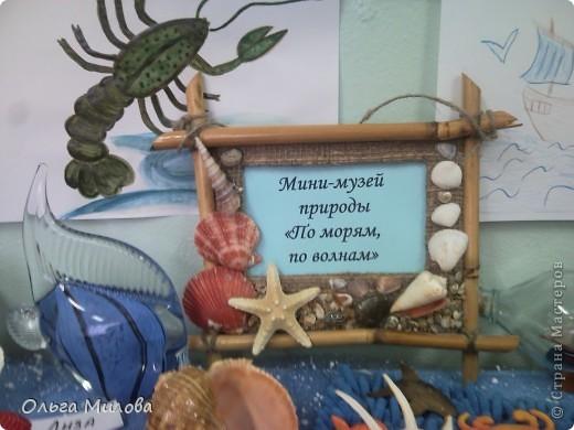 """Мини-музей природы.  Один из наших проектов — «Мини-музеи в детском саду». Почему мы создали мини-музеи? Москва — город музеев. Однако часто ли наши дети бывают в них? Мы провели анкетирование и выяснили, что большая часть воспитанников детского сада ни разу не была в музее. Причины самые разные. Во-первых, мы находимся в типичном «спальном» районе, удаленном от центра, где размещено большинство музеев. Во-вторых, многие родители считают, что дошкольникам еще рано посещать такие учреждения: «Малы и ничего не поймут, чего зря время тратить». И, в-третьих, многим папам и мамам просто не приходит в голову идея такой экскурсии.  Как же привлечь внимание родителей к музеям? Прямая агитация здесь вряд ли поможет. Поэтому для начала мы решили создать собственный «музейный комплекс», включающий мини-музеи в групповых помещениях, мини-музей природы и картинную галерею.  Наша группа представляет мини-музей """"По морям, по волнам"""" (Черное море).  ЗАДАЧИ: Познакомить детей с морем и его обитателями; Способствовать воспитанию у детей основ музейной культуры; Способствовать сотрудничеству педагогов, детей и родителей; Развивать поисково- исследовательскую деятельность детей; Расширять и систематизировать знания детей о море, как экологической системе и олимпийской зоне 2014 года; Развивать связную речь детей, активизировать и обогащать словарь детей; Совершенствовать стиль партнерских отношений, стимулировать самостоятельность; Использовать в работе мини- музея ИКТ; Приобщение детей к музеям, творческое развитие личности. Наш мини-музей """"По морям, по волнам"""". На презентацию мини-музея я сделала корабль из конфет.   фото 16"""