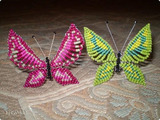 Бабочки фото 7
