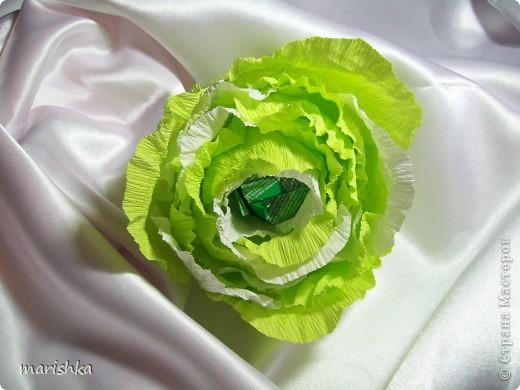 Как сделать капусту из бумаги своими руками на голову 26