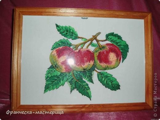 Вышивка фрукты гладью 34