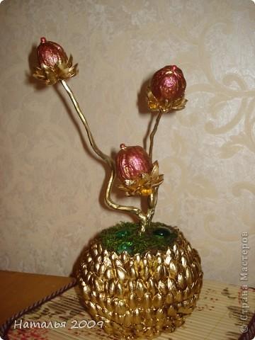 Цветение золотого орешка. фото 1