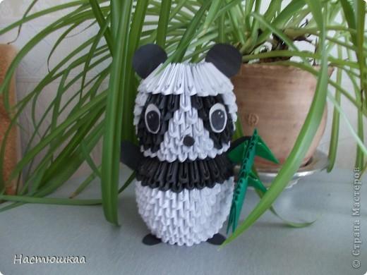 Спешу показать мою панду... Сам мк нашла тут http://iz-bumagi.com/video-shemy/modulnoe-origami-panda-video-shema  В видео, в основе панды 24 модуля, а у меня 26. Поэтому я буду показывать как делала я :) фото 1