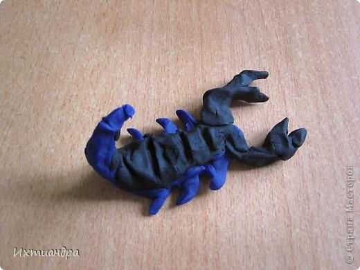 """У меня сын (9 лет) увлёкся коллекционированием фигурок скорпионов. И вот, я решила пополнить его коллекцию, нарисовав скорпиона в технике """"point-to-point"""". Получилось необычно, оригинально, да и сын остался доволен. Тем более, это может быть прекрасным подарком для тех, кто родился под созвездием этого знака. Хочу поделится секретами работы над картиной. фото 23"""