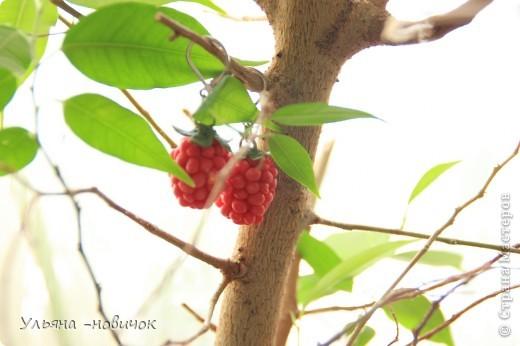 сережки-малинки из холодного фарфора))) на моей самодельной листве)))) фото 3