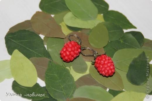 сережки-малинки из холодного фарфора))) на моей самодельной листве)))) фото 1