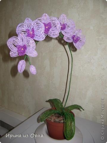 1.Так понравилось плести орхидею http://stranamasterov.ru/node/339833, что не устояла и сплела еще одну...