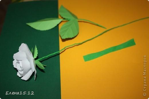 Приветствую всех жителей Страны Мастеров.Сегодня я к вам с букетом цветов.Делала его уже давно,но никак не могла собрать его в единое целое.И вот наконец-то получилось.Результатом осталась довольна.Теперь стоит душу радует своим колоритом красок,т.к погода огорчает.Несколько идей по изготовлению цветов предлагаю вашему вниманию,может кому пригодится. фото 13