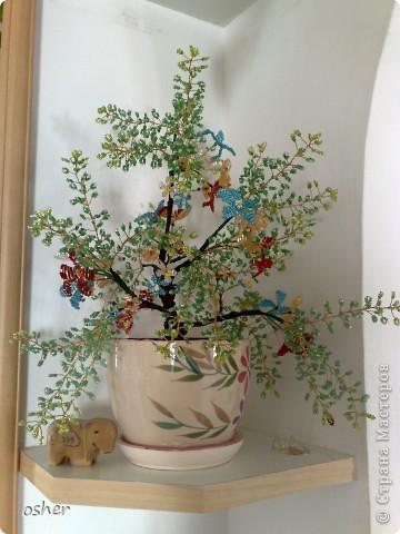 """Дерево """"утренние росы """"-плела по книге Елены Стольной  """"Цветы и деревья из бисера """" ."""