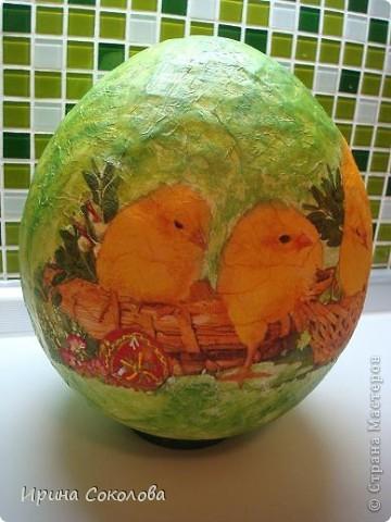 Вот такое огромное яйцо мы сделали с сыном на школьную пасхальную выставку (куриные яички я положила рядом, чтобы виден был размер нашего яйца).  фото 14