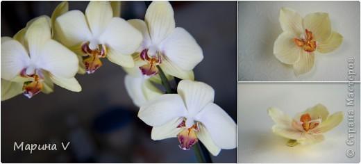Всем привет! Я сегодня с орхидейками:))  Цветок в диаметре около 9 см, приклеила на зажим фото 6
