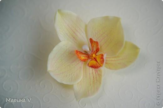 Всем привет! Я сегодня с орхидейками:))  Цветок в диаметре около 9 см, приклеила на зажим фото 4