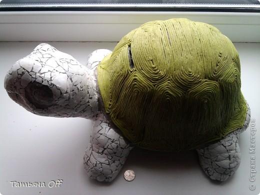"""Исполнилось Пончику 7 лет,вскрыли наконец-то его черепаху-копилку...Как копилка она молодец,конечно же,а вот как черепаха-страшна была необычайно...да простят меня ее изготовители.Была она флоком колюченьким обработана и красками ядовитыми выкрашена-желтый канареечный,зеленый киви и проч.,проч.....Желание ее задекорировать было столь велико,что отфотить ее """"до"""" я не успела.Перед Вами панцирь по технике Тани Сорокиной  https://stranamasterov.ru/node/308701 ,а тельце скорлупой яичной обклеенное.Уже красавица почти. фото 1"""