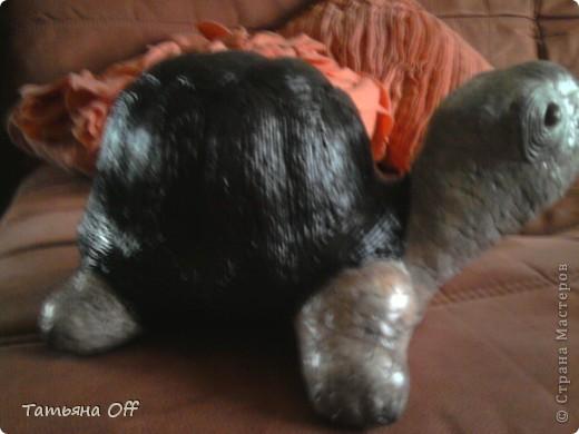 """Исполнилось Пончику 7 лет,вскрыли наконец-то его черепаху-копилку...Как копилка она молодец,конечно же,а вот как черепаха-страшна была необычайно...да простят меня ее изготовители.Была она флоком колюченьким обработана и красками ядовитыми выкрашена-желтый канареечный,зеленый киви и проч.,проч.....Желание ее задекорировать было столь велико,что отфотить ее """"до"""" я не успела.Перед Вами панцирь по технике Тани Сорокиной  https://stranamasterov.ru/node/308701 ,а тельце скорлупой яичной обклеенное.Уже красавица почти. фото 2"""