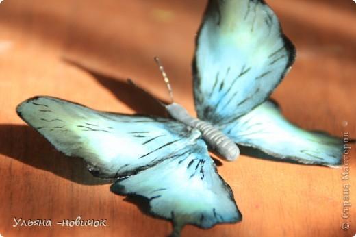 насмотрелась вчера на великолепную бабочку у Марины V.... И твердо решила - тоже хочу))) Конечно, до её работы мне далековато... непоседа, сбрала не досохшую)). Но результатом довольна фото 1