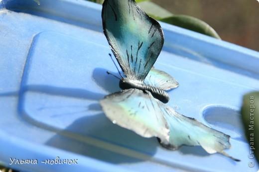 насмотрелась вчера на великолепную бабочку у Марины V.... И твердо решила - тоже хочу))) Конечно, до её работы мне далековато... непоседа, сбрала не досохшую)). Но результатом довольна фото 2