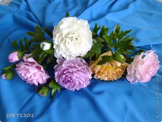 Слепила махровые пионы и по ходу работы сфотографировала процесс лепки цветка .  фото 14