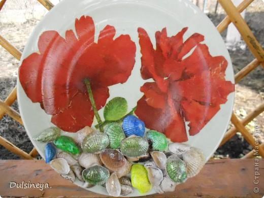 Декупаж тарелок с речными ракушками фото 3
