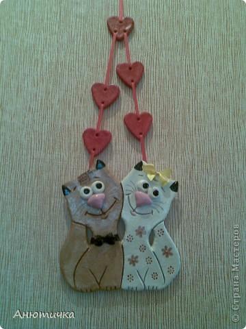 Влюбленные котики фото 1