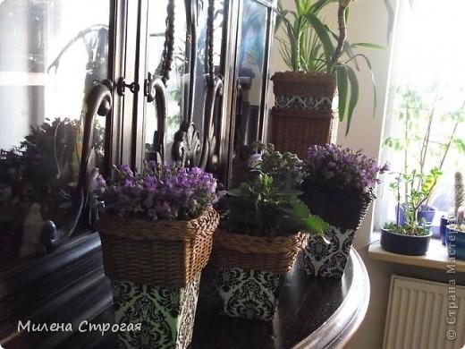 Мастер-класс посвящен созданию кашпо для цветов. Долго вынашивала идею, которую увидела у Чехов (куда ж без них...) Как всегда - ни слова о том как сделано...  фото 19