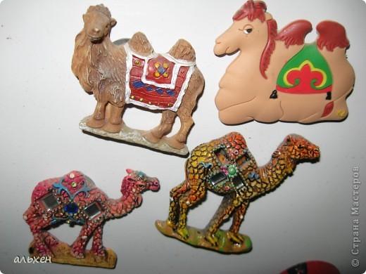 Доброго времени суток, дорогие мои жители СМ!!!!!! Обещала девочкам показать свою коллекцию верблюдов..... и.... подумала - может быть, ещё кому нибудь  захочется посмотреть на моих красавцев..... Милости прошу!!!! Много писать не буду, т.к. не уверена, что загружу.... пятый день пытаюсь..... на последнем этапе всё зависает..... и..... кирдык..... Но я же упёртая..... как баран..... не успокоюсь, пока не загружу..... Это моя пятая попытка...... надеюсь заключительная.....  фото 26