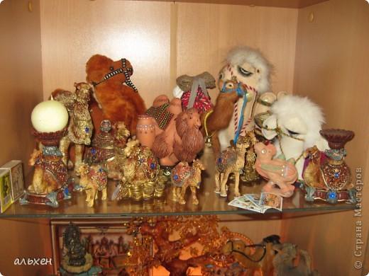 Доброго времени суток, дорогие мои жители СМ!!!!!! Обещала девочкам показать свою коллекцию верблюдов..... и.... подумала - может быть, ещё кому нибудь  захочется посмотреть на моих красавцев..... Милости прошу!!!! Много писать не буду, т.к. не уверена, что загружу.... пятый день пытаюсь..... на последнем этапе всё зависает..... и..... кирдык..... Но я же упёртая..... как баран..... не успокоюсь, пока не загружу..... Это моя пятая попытка...... надеюсь заключительная.....  фото 2