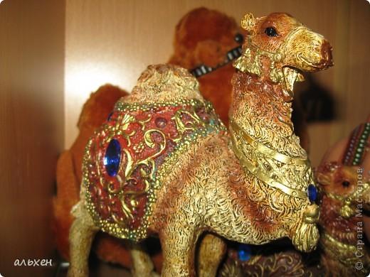 Доброго времени суток, дорогие мои жители СМ!!!!!! Обещала девочкам показать свою коллекцию верблюдов..... и.... подумала - может быть, ещё кому нибудь  захочется посмотреть на моих красавцев..... Милости прошу!!!! Много писать не буду, т.к. не уверена, что загружу.... пятый день пытаюсь..... на последнем этапе всё зависает..... и..... кирдык..... Но я же упёртая..... как баран..... не успокоюсь, пока не загружу..... Это моя пятая попытка...... надеюсь заключительная.....  фото 18