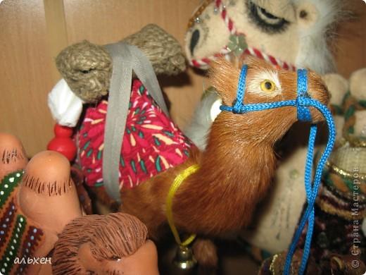 Доброго времени суток, дорогие мои жители СМ!!!!!! Обещала девочкам показать свою коллекцию верблюдов..... и.... подумала - может быть, ещё кому нибудь  захочется посмотреть на моих красавцев..... Милости прошу!!!! Много писать не буду, т.к. не уверена, что загружу.... пятый день пытаюсь..... на последнем этапе всё зависает..... и..... кирдык..... Но я же упёртая..... как баран..... не успокоюсь, пока не загружу..... Это моя пятая попытка...... надеюсь заключительная.....  фото 21