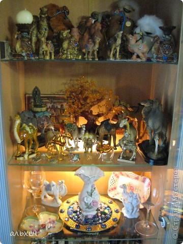 Доброго времени суток, дорогие мои жители СМ!!!!!! Обещала девочкам показать свою коллекцию верблюдов..... и.... подумала - может быть, ещё кому нибудь  захочется посмотреть на моих красавцев..... Милости прошу!!!! Много писать не буду, т.к. не уверена, что загружу.... пятый день пытаюсь..... на последнем этапе всё зависает..... и..... кирдык..... Но я же упёртая..... как баран..... не успокоюсь, пока не загружу..... Это моя пятая попытка...... надеюсь заключительная.....  фото 27