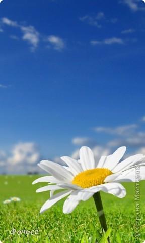 Однажды в СМ я нашла у кого то  похожие маленькие цветы, но МК не было, я решила порыться в голове и вот что получилось...  фото 12