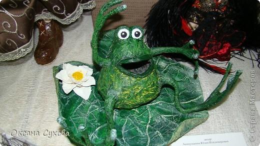 Лягушонок фото 8
