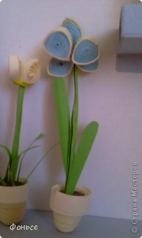 Однажды в СМ я нашла у кого то  похожие маленькие цветы, но МК не было, я решила порыться в голове и вот что получилось...  фото 5