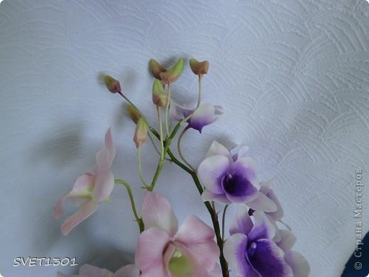 Другой подруге на день рождения слепила три ветки орхидеи. Планирую слепить ещё две, но не уверенна, что успею. Пока такой букет получился. фото 5