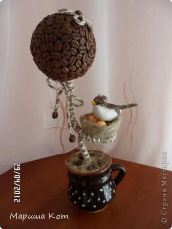 Привет Страна Мастеров! Ещё одно кофейное деревце выросло у меня)))) Подарила его другу на день рождения.  фото 1