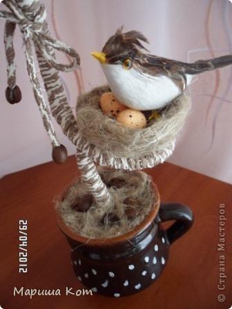 Привет Страна Мастеров! Ещё одно кофейное деревце выросло у меня)))) Подарила его другу на день рождения.  фото 2