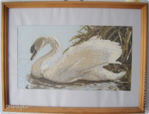 """Лебедь"" По моему фирма ,,Роилис,, фото 1"